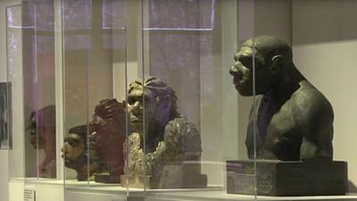 En Bulgarie, les plus anciennes traces d'Homo sapiens d'Europe