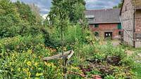 La vie sauvage du jardin en streaming