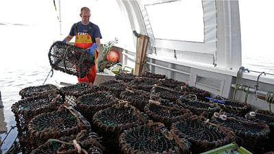 Les petits pêcheurs britanniques plus que jamais brexiters