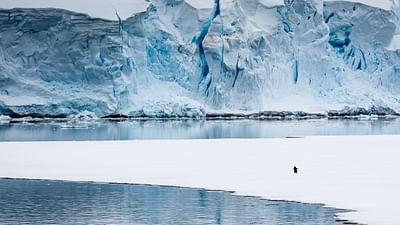 Laurence de la Ferrière : de l'Himalaya à l'Antarctique