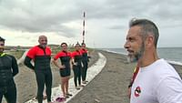 Arte regards - des chiens secouristes des mers en streaming