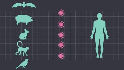 Virus à gogo : bienvenue dans notre futur ?