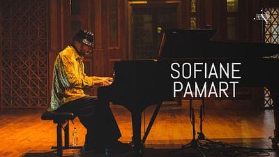 Sofiane Pamart au Piano Day