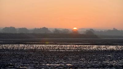 La Dombes, un paradis aquatique méconnu