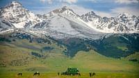 Besoin d'air et de grands espaces ? Sur les traces d'un cavalier solitaire en Mongolie, aux côtés des derniers nomades d'Iran ou à l'assaut des sommets du Tadjikistan avec Sylvain Tesson, le vaste monde est à portée de clic.