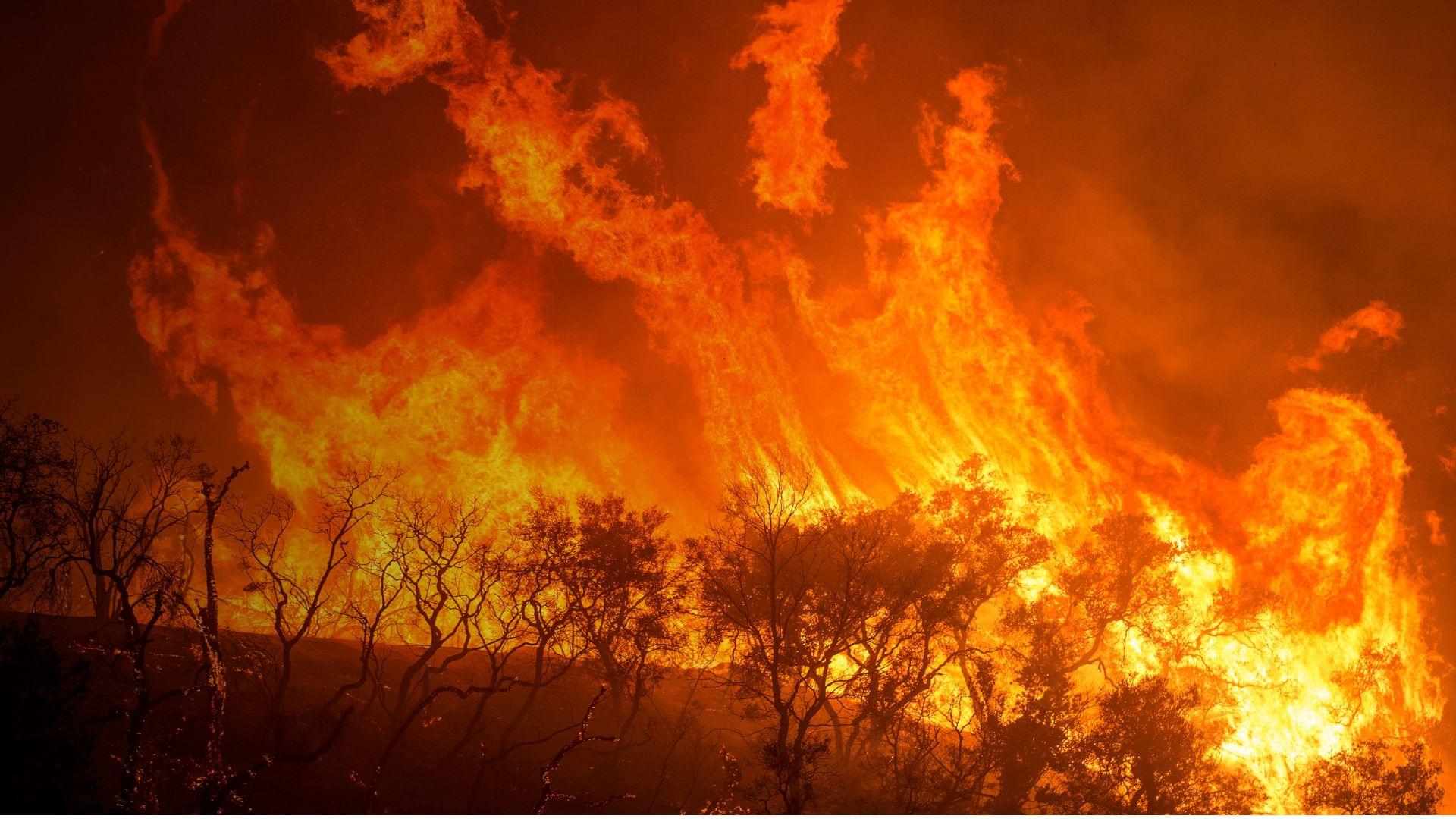 Feux et incendies