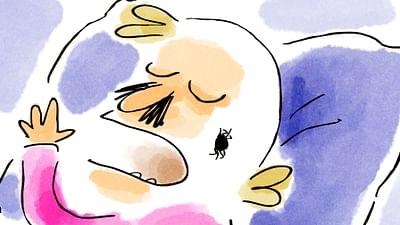 Ingoiare ragni nel sonno