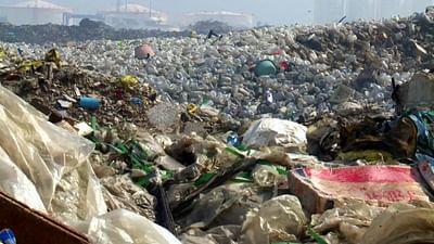 L'Unione europea non fa nulla per l'ambiente
