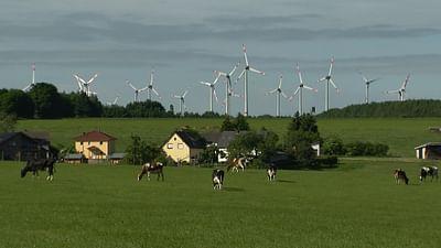 Energia eolica - Manna dal cielo o maledizione?