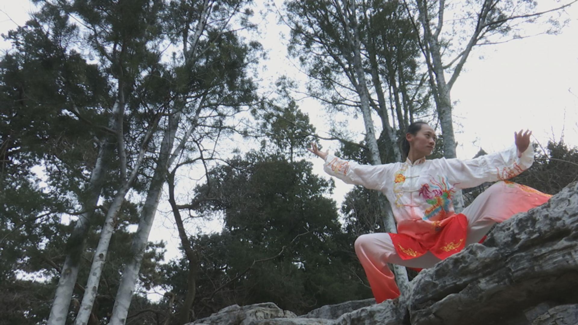 Kung Fu Revolution(s)