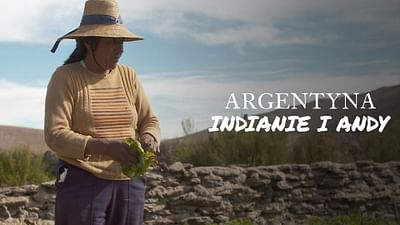 Argentyna, Indianie i Andy