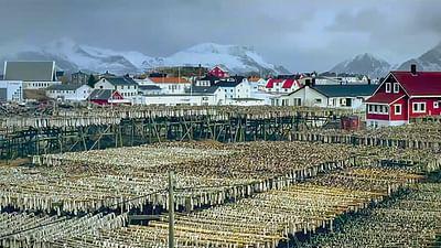 Laponia, kraina śniegu