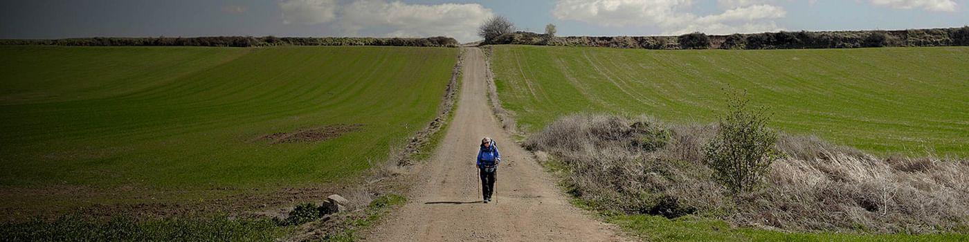 Droga św. Jakuba - Camino de Santiago