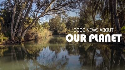 Good News From Our Planet