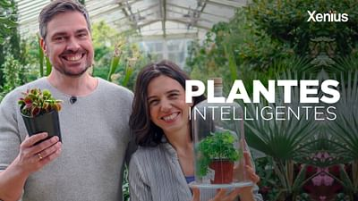 Plantes intelligentes