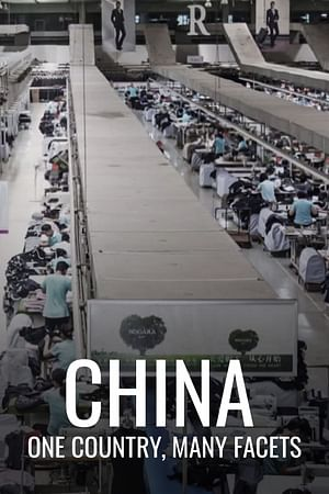 China: One Country, Many Facets