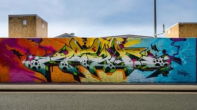 The Rise of Graffiti Writing